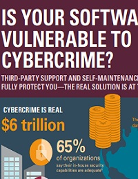 IS YOUR SOFTWARE VULNERABLE TO CYBERCRIME?