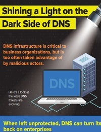 SHINING A LIGHT ON THE DARK SIDE OF DNS