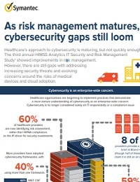 AS RISK MANAGEMENT MATURES, CYBERSECURITY GAPS STILL LOOM