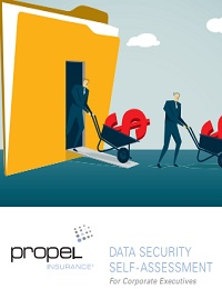 DATA SECURITY SELF- ASSESSMENT FOR CORPORATE EXECUTIVES